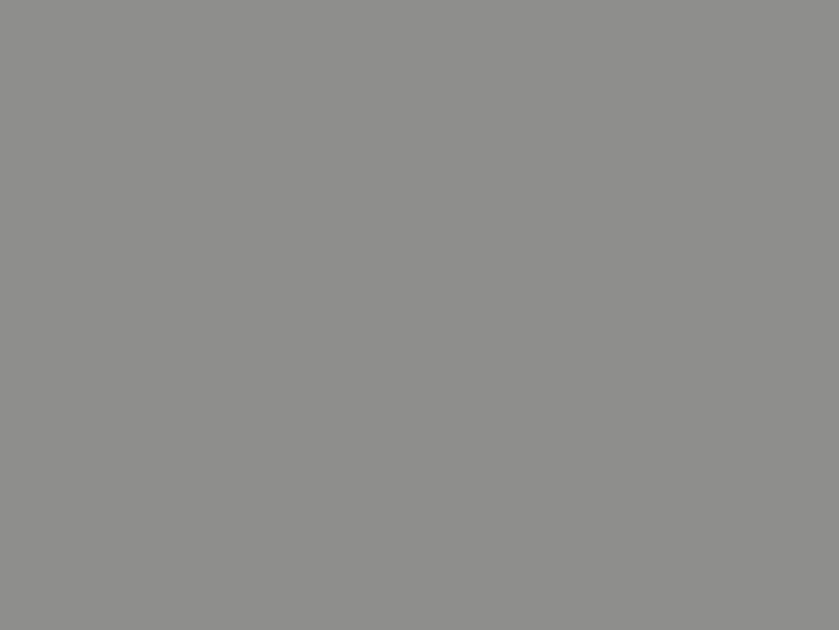 Grau AluminiumRal 9007